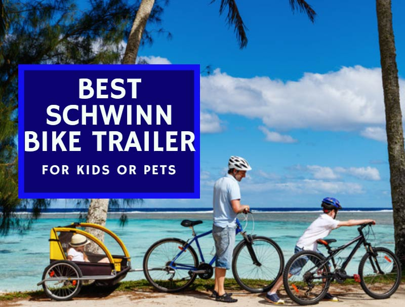 Best Schwinn Bike Trailer For Kids Or Pets